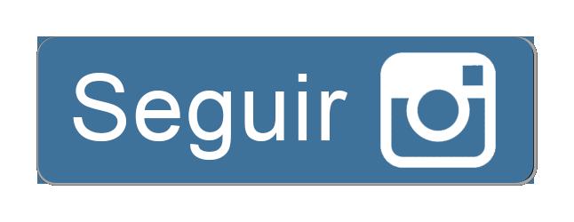 BOTÃO-SEGUIR-INSTAGRAM